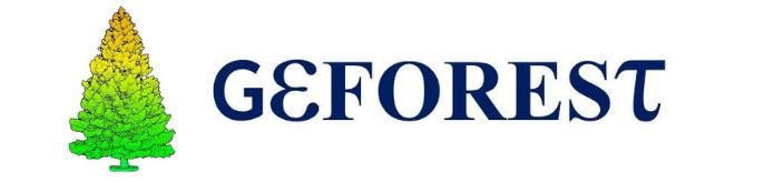 Logo Full Geforest